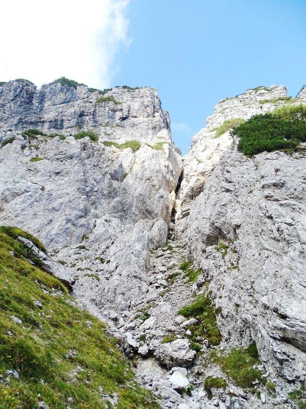 monte hoberdeider (229)